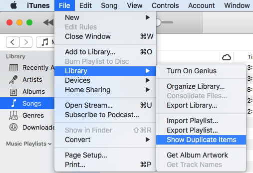 show iTunes duplicate items