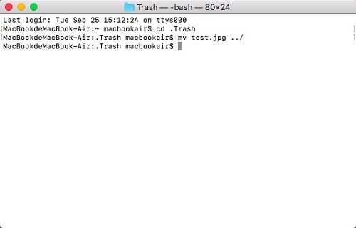restore files deleted from recycle bin mac terminal