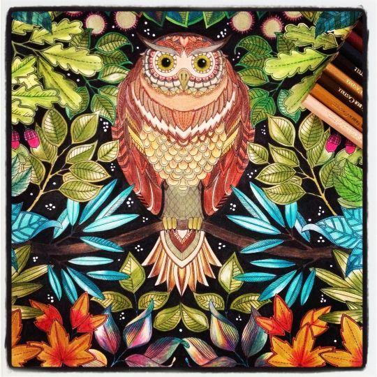 Free And Printable Secret Garden Coloring Book In Pdf Cisdem